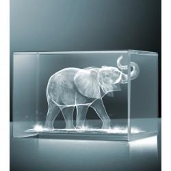 3D slon