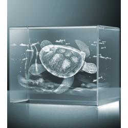 3D želva