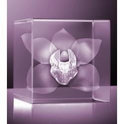 3D orchidej