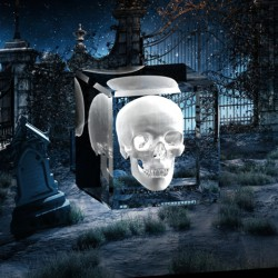 Fotka-do-skla-3D-fotodarek-Ost_001