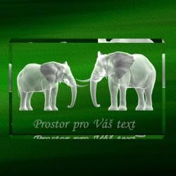 3D sloníci