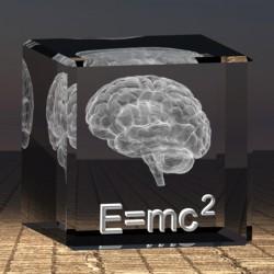 3D mozek