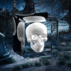 3D Halloween - lebka